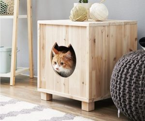 Cute cats house